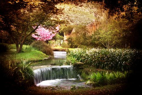 Il giardino di ninfa tra sogno e realt - I giardini di ninfa ...